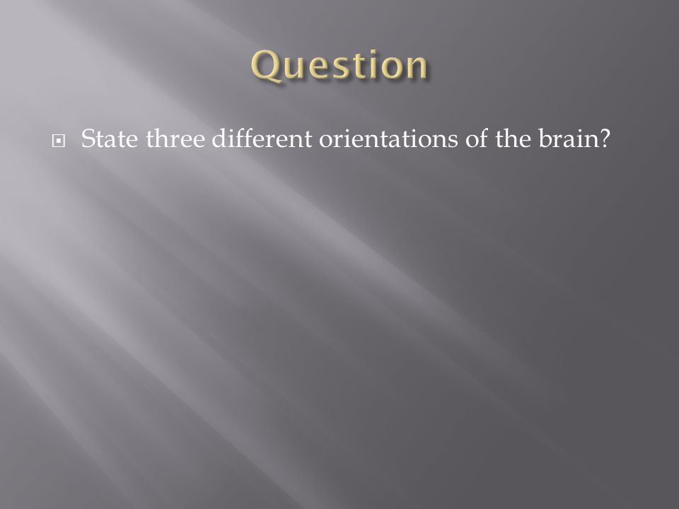 Question State three different orientations of the brain