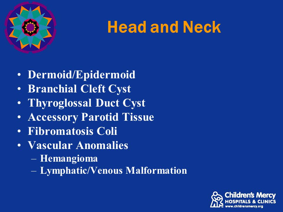 Head and Neck Dermoid/Epidermoid Branchial Cleft Cyst