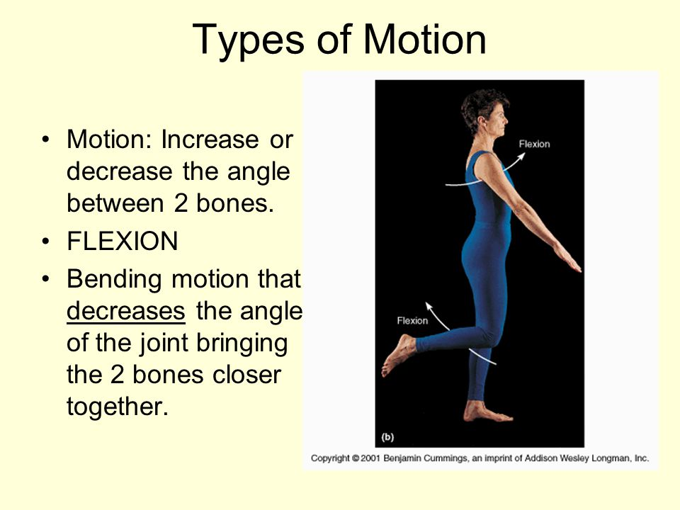Types of Motion Motion: Increase or decrease the angle between 2 bones. FLEXION.