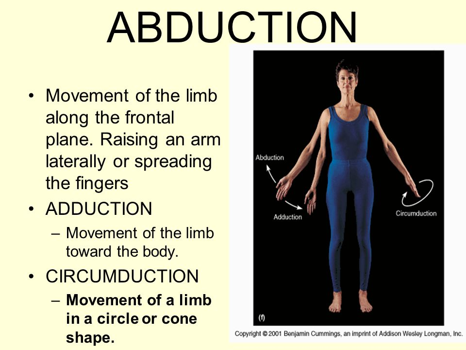 ABDUCTION Movement of the limb along the frontal plane. Raising an arm laterally or spreading the fingers.