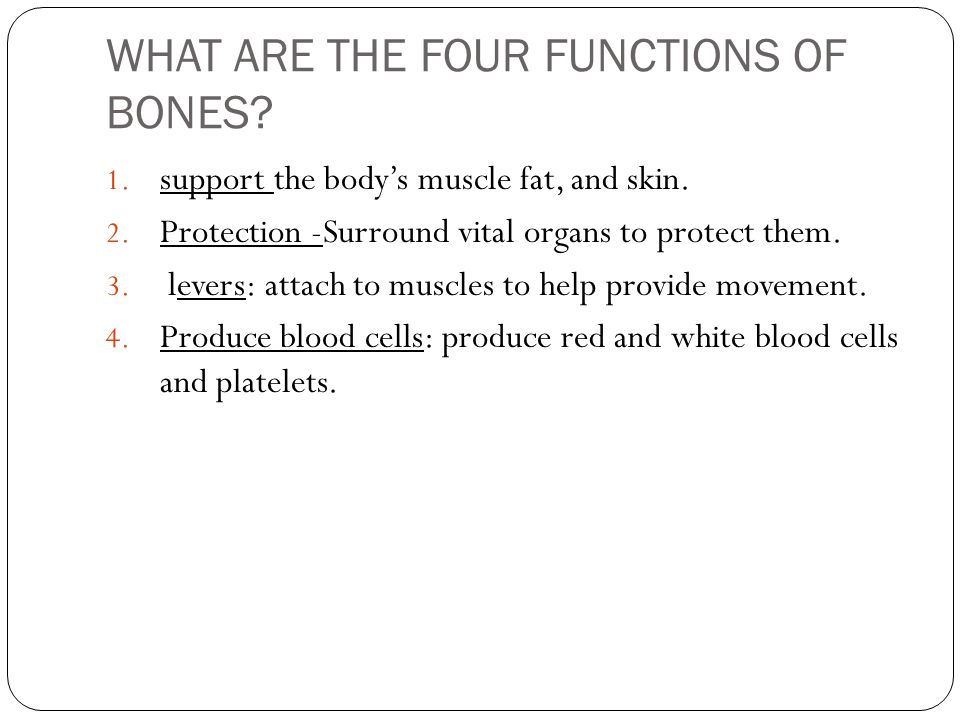 WHAT ARE THE FOUR FUNCTIONS OF BONES
