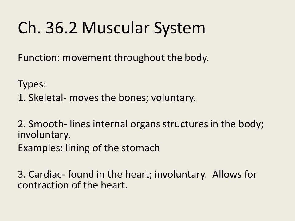 Ch. 36.2 Muscular System
