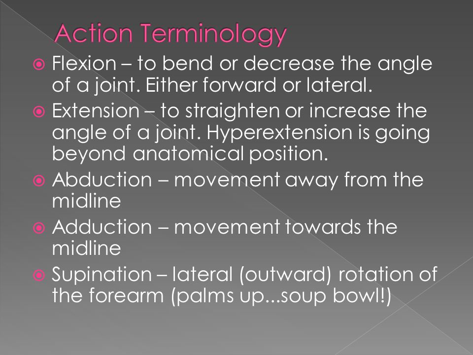 Action Terminology Flexion – to bend or decrease the angle of a joint. Either forward or lateral.