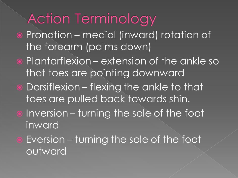 Action Terminology Pronation – medial (inward) rotation of the forearm (palms down)