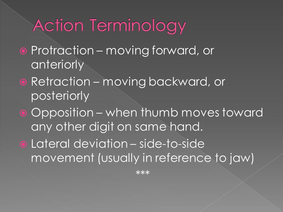 Action Terminology Protraction – moving forward, or anteriorly