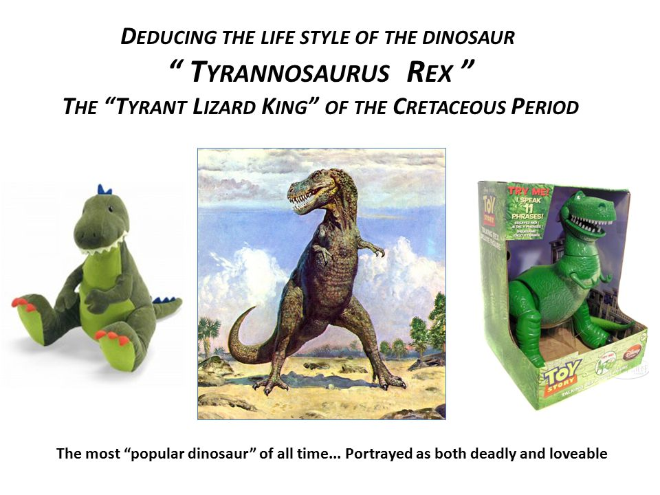 Tyrannosaurus Rex Deducing the life style of the dinosaur