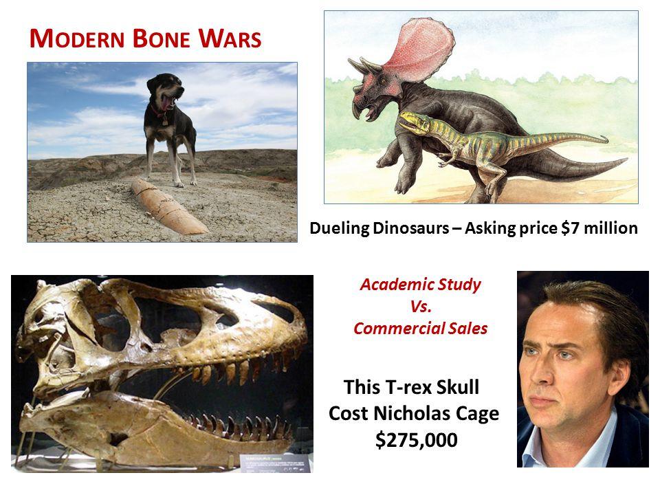 Modern Bone Wars This T-rex Skull Cost Nicholas Cage $275,000