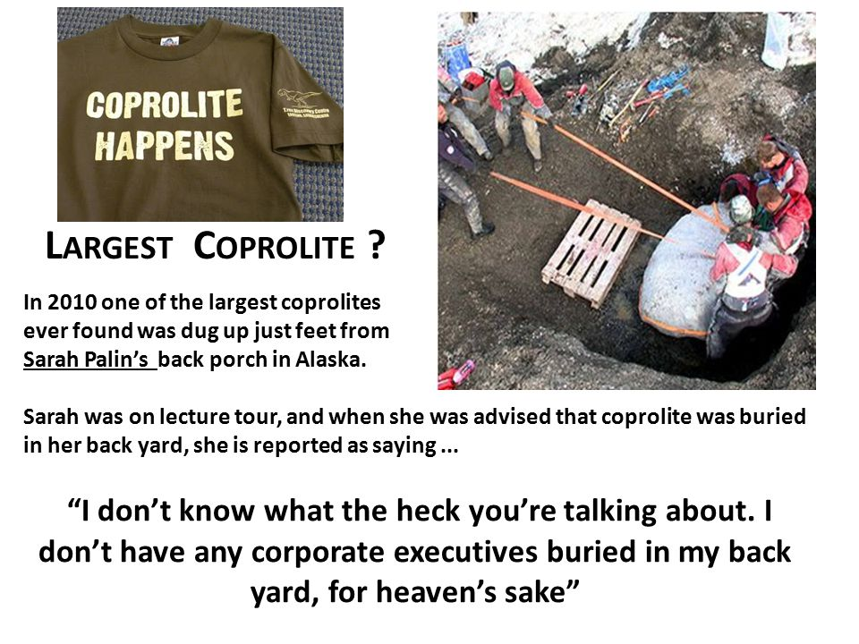 Largest Coprolite In 2010 one of the largest coprolites. ever found was dug up just feet from. Sarah Palin's back porch in Alaska.