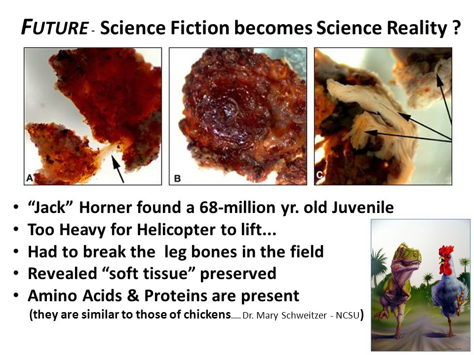 Future - Science Fiction becomes Science Reality
