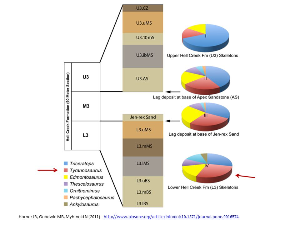 Horner JR, Goodwin MB, Myhrvold N (2011) http://www. plosone