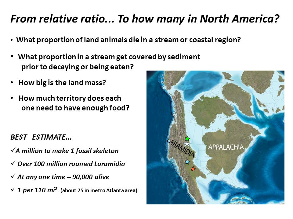 From relative ratio... To how many in North America