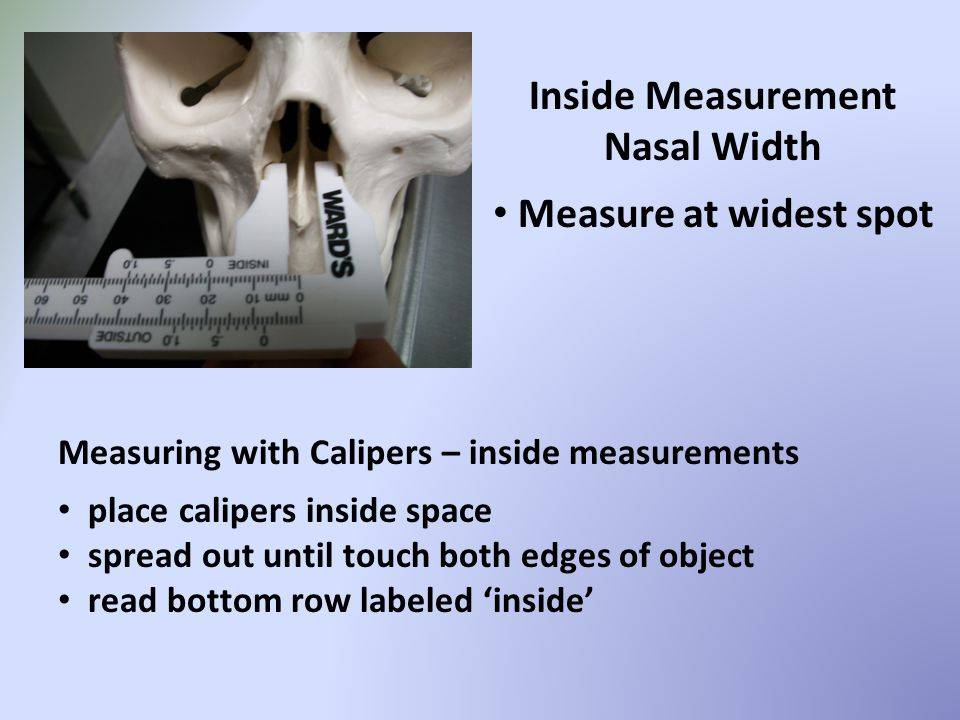 Inside Measurement Nasal Width Measure at widest spot