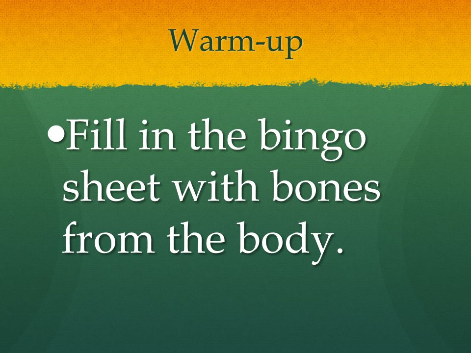 Fill in the bingo sheet with bones from the body.