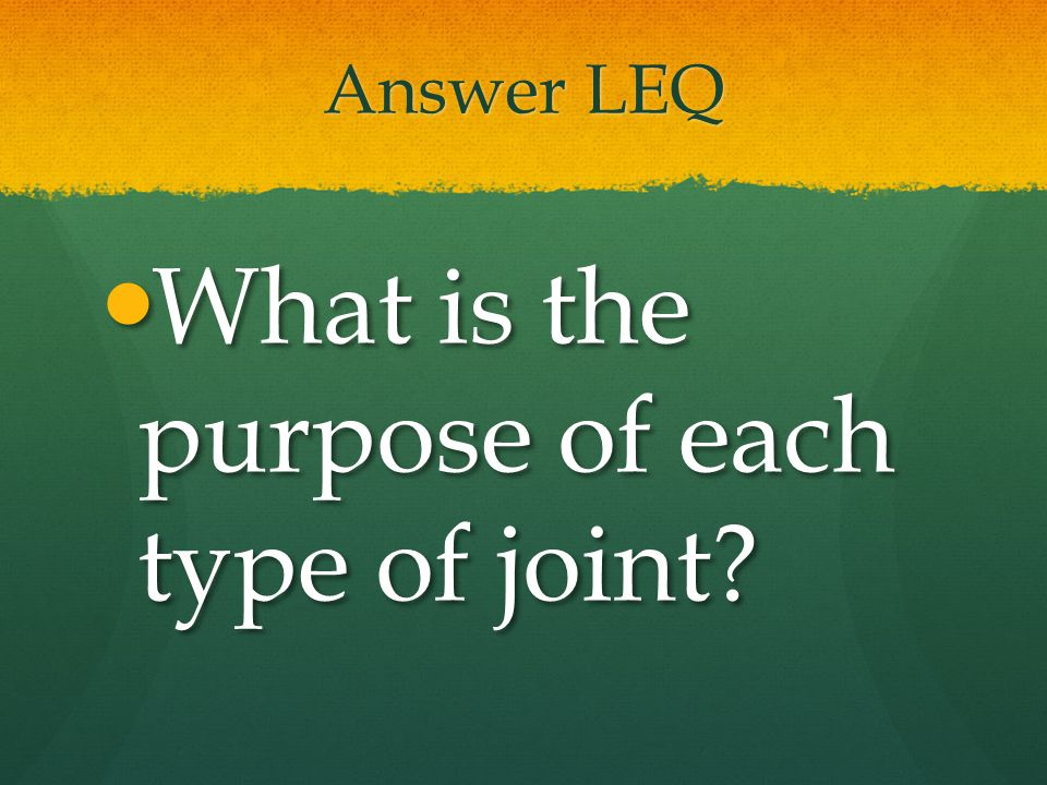 What is the purpose of each type of joint