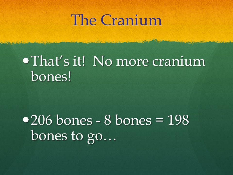 The Cranium That's it! No more cranium bones!