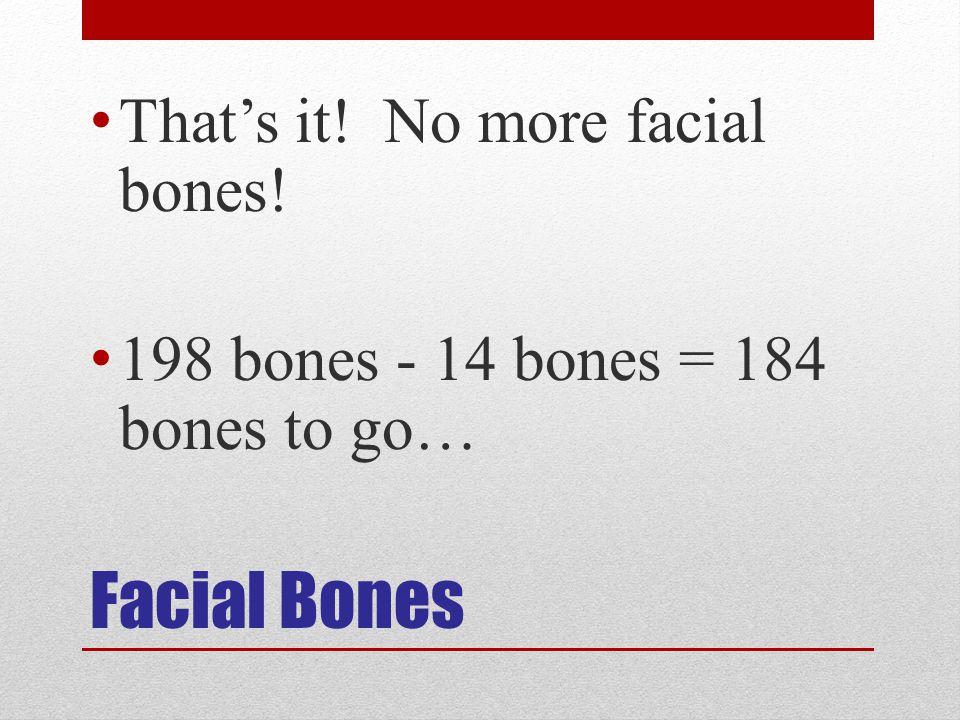 Facial Bones That's it! No more facial bones!