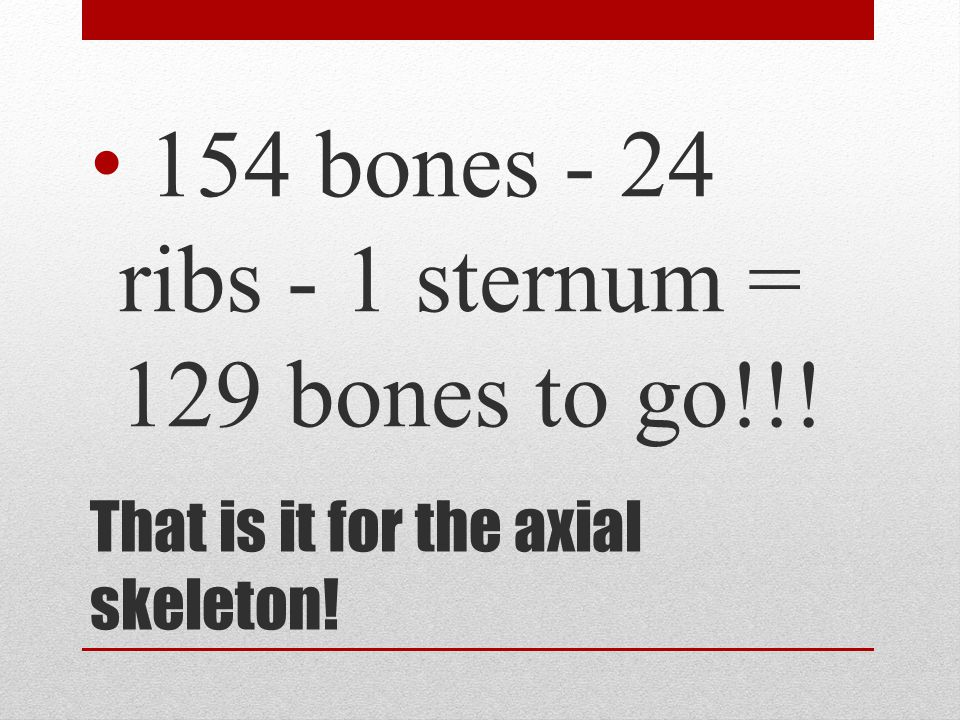 That is it for the axial skeleton!