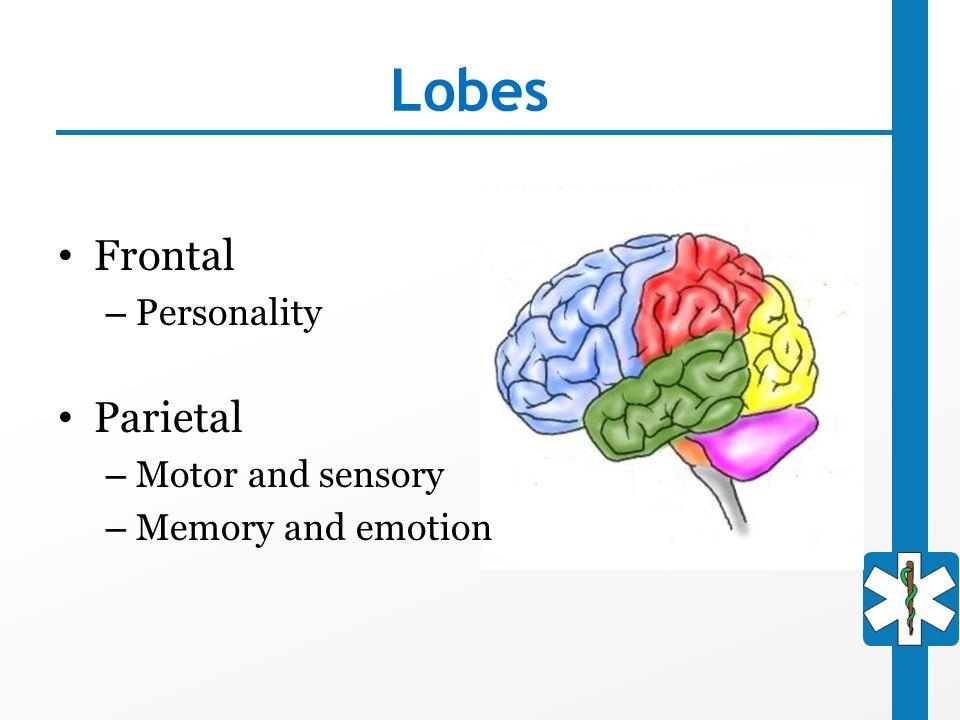 Lobes Frontal Parietal Personality Motor and sensory