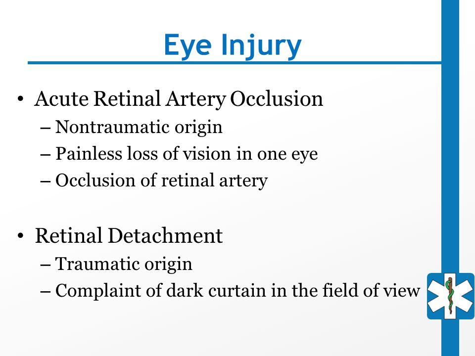 Eye Injury Acute Retinal Artery Occlusion Retinal Detachment