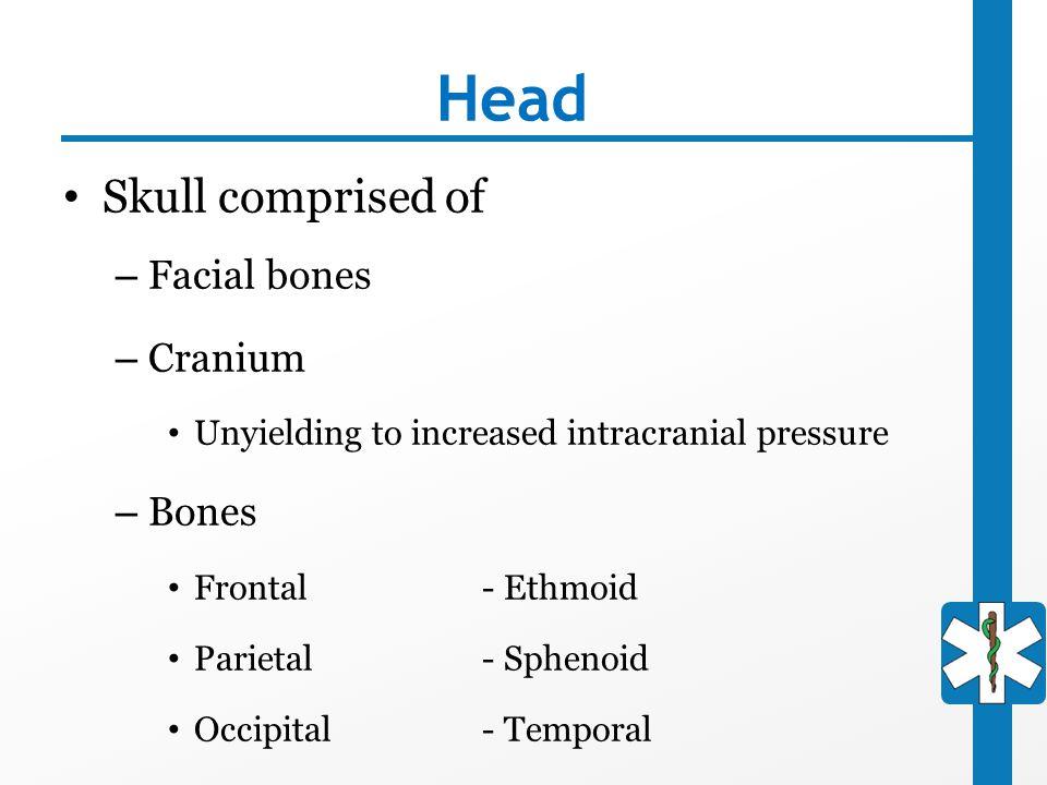 Head Skull comprised of Facial bones Cranium Bones