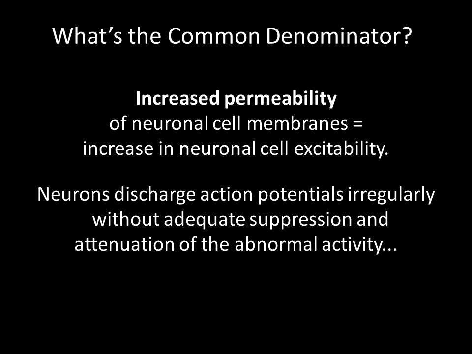 What's the Common Denominator