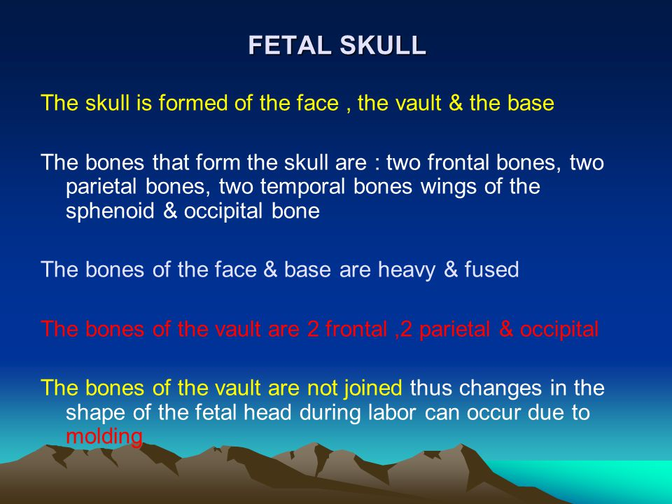 FETAL SKULL The skull is formed of the face , the vault & the base
