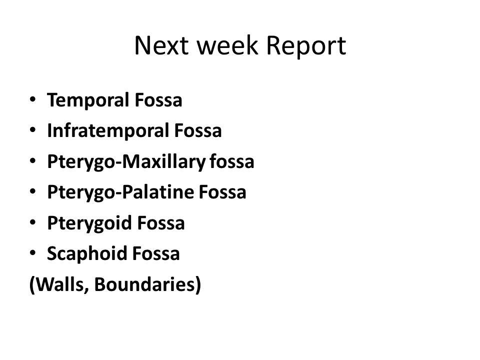 Next week Report Temporal Fossa Infratemporal Fossa