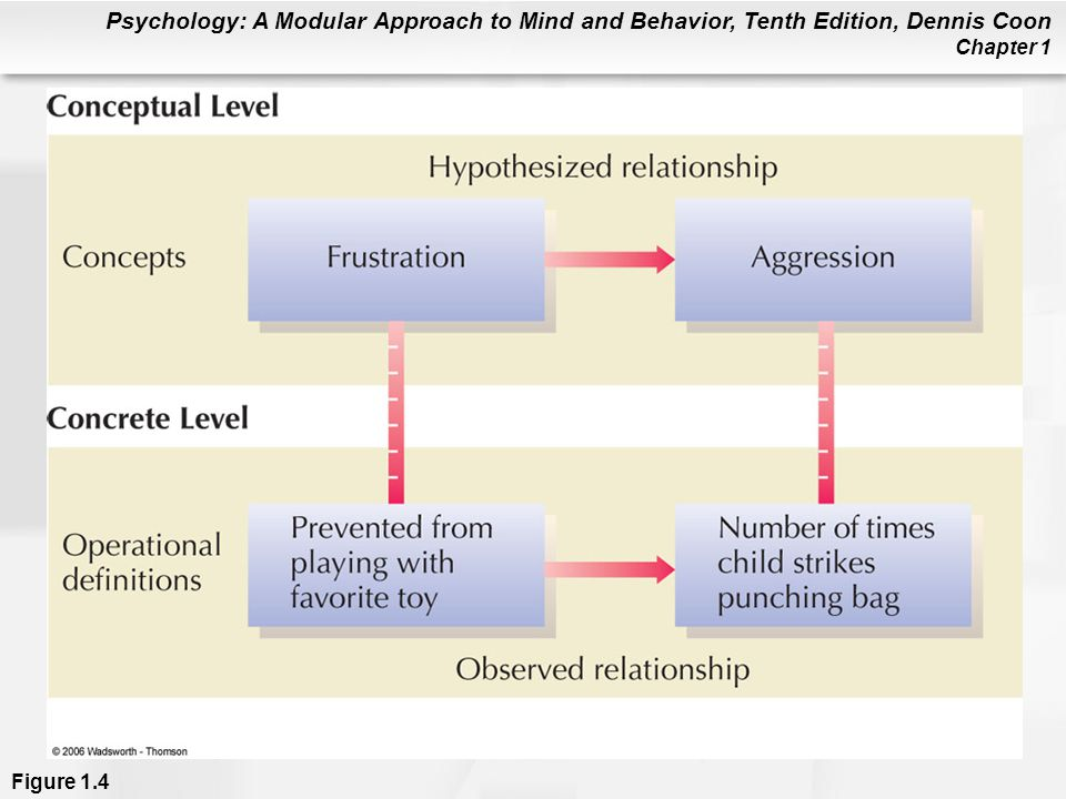 Figure 1.4 Operational definitions are used to link concepts with concrete observations. Do you think the examples given are reasonable operational definitions of frustration and aggression Operational definitions vary in how well they represent concepts. For this reason, many different experiments may be necessary to draw clear conclusions about hypothesized relationships in psychology.