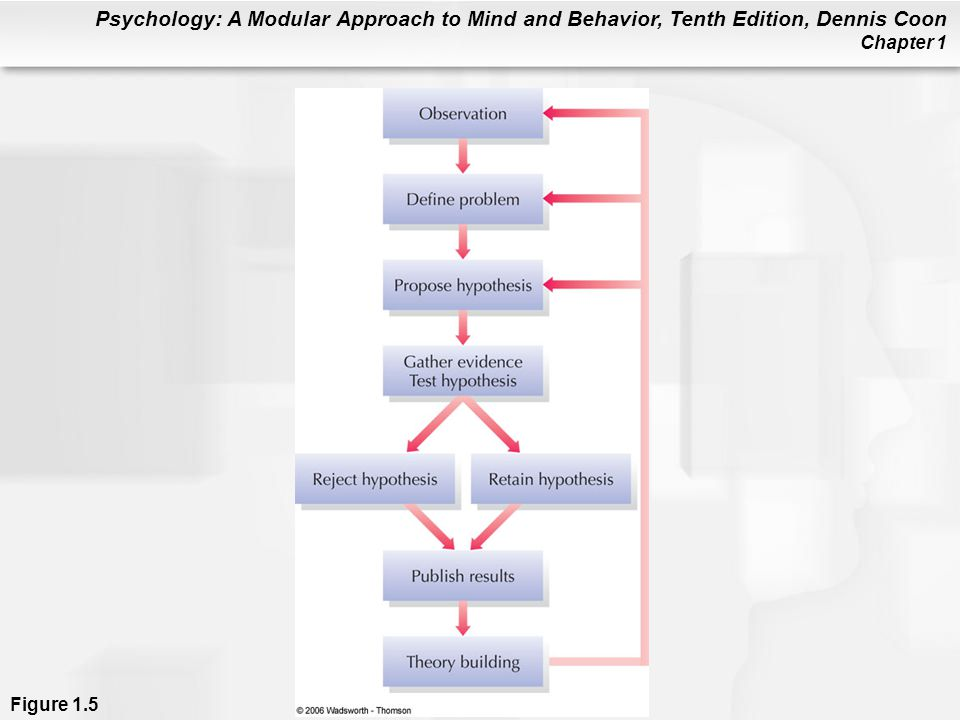 Figure 1.5 Psychologists use the logic of science to answer questions about behavior. Specific hypotheses can be tested in a variety of ways, including naturalistic observation, correlational studies, controlled experiments, clinical studies, and the survey method. Psychologists revise their theories to reflect the evidence they gather. New or revised theories then lead to new observations, problems, and hypotheses.