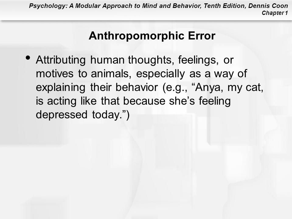 Anthropomorphic Error
