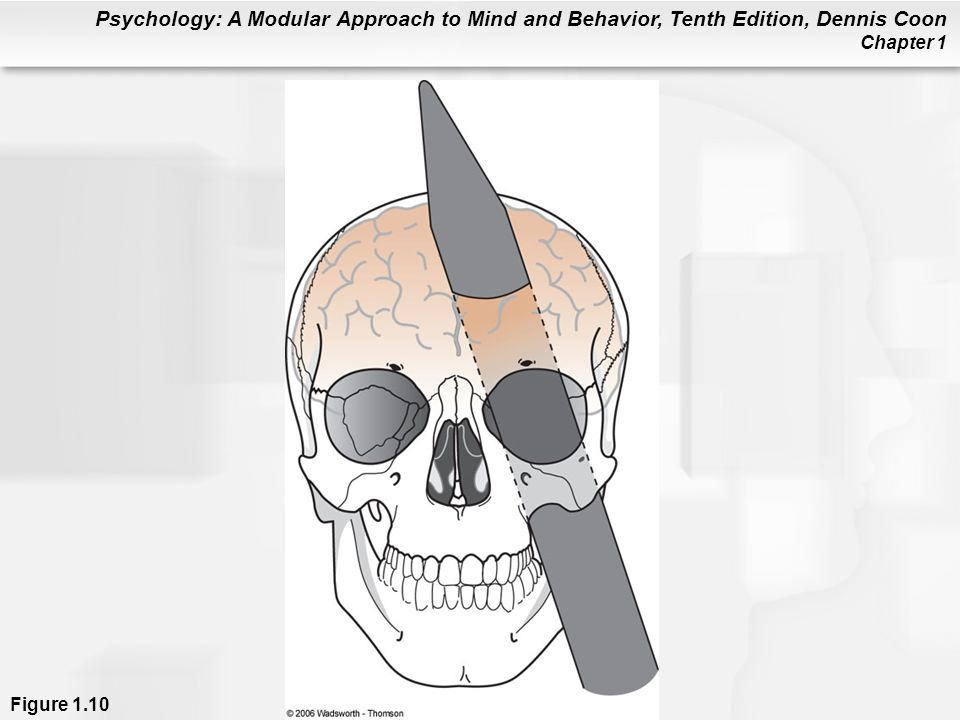 Figure 1.10 Some of the earliest information on the effects of damage to frontal areas of the brain came from a case study of the accidental injury of Phineas Gage.