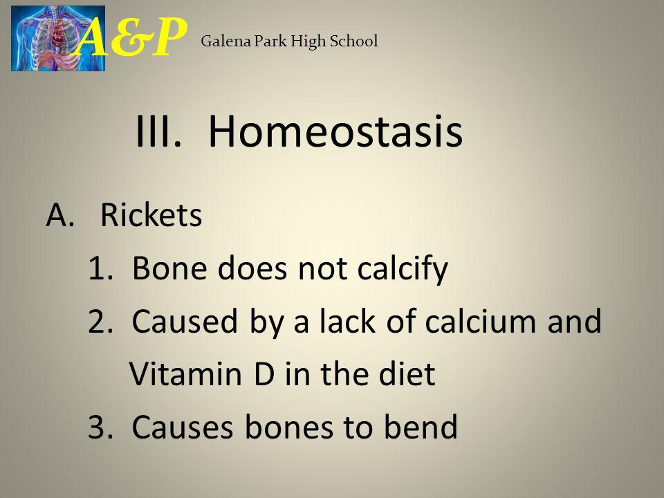 A&P III. Homeostasis Rickets 1. Bone does not calcify