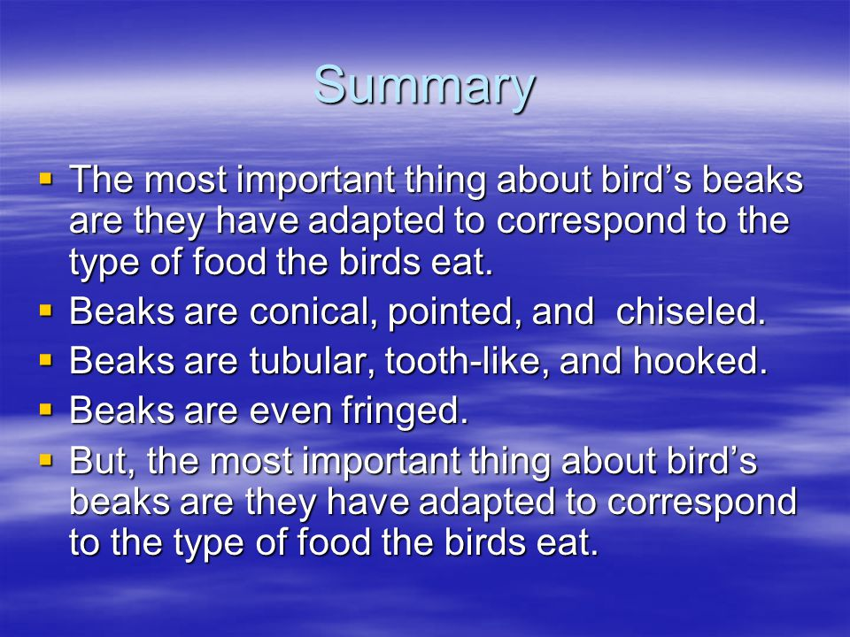 Summary The most important thing about bird's beaks are they have adapted to correspond to the type of food the birds eat.