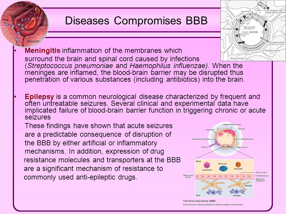 Diseases Compromises BBB