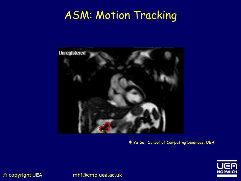 ASM: Motion Tracking © copyright UEA mhf@cmp.uea.ac.uk