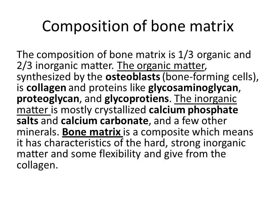 Inorganic Phosphate Bone Physiology. - ppt...