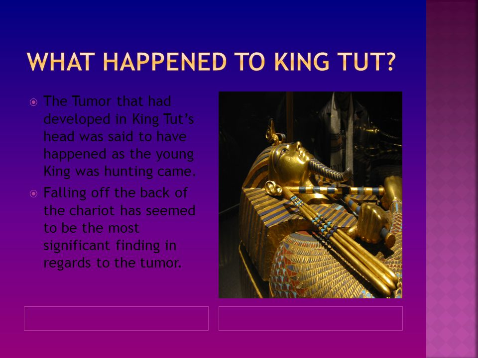 What happened to king tut