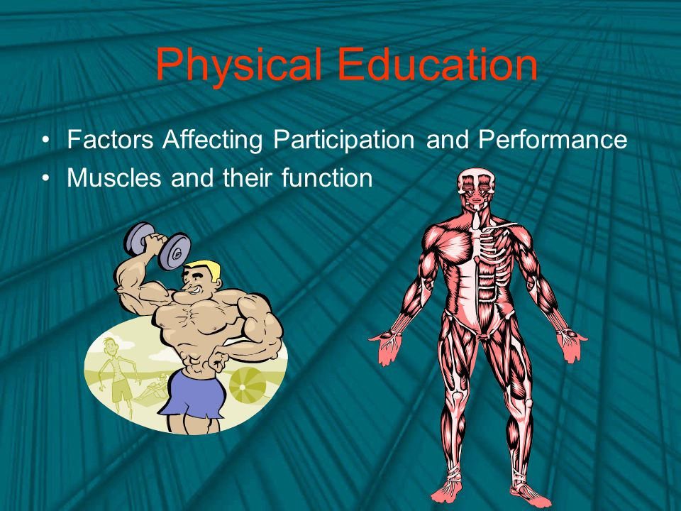 Physical Education Factors Affecting Participation and Performance