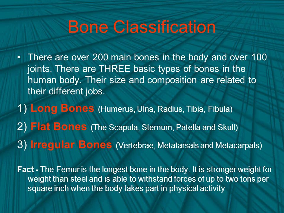Bone Classification
