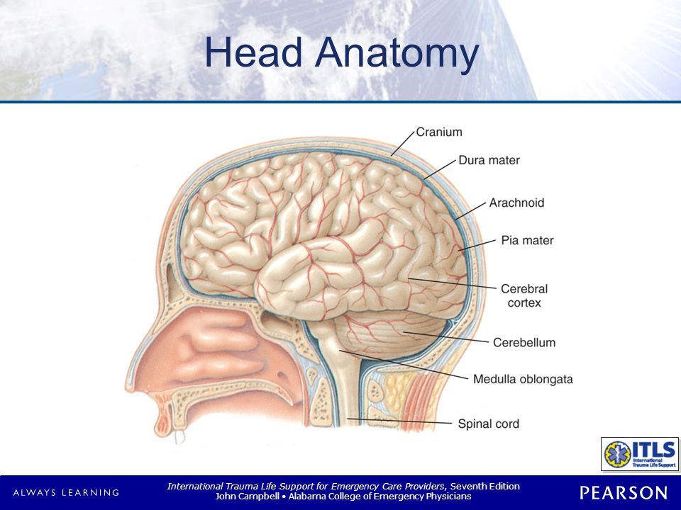 Brain Injuries Primary Secondary Immediate damage to brain tissue
