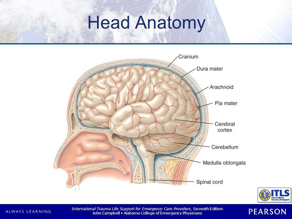 Brain Injuries Primary Secondary Immediate damage to brain tissue