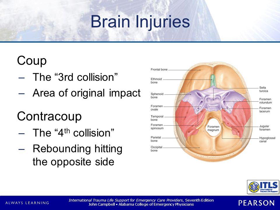 Brain Anatomy Intracranial volume Brain CSF Blood vessel volume