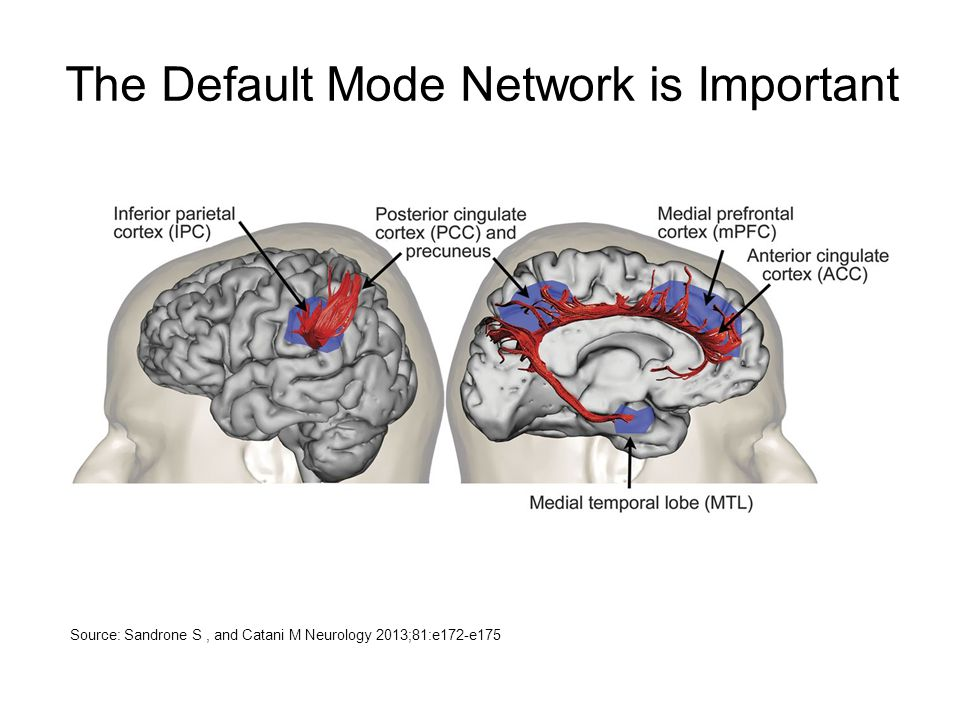 The Default Mode Network is Important
