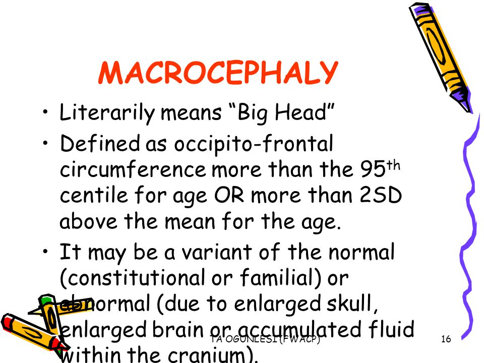 MACROCEPHALY Literarily means Big Head