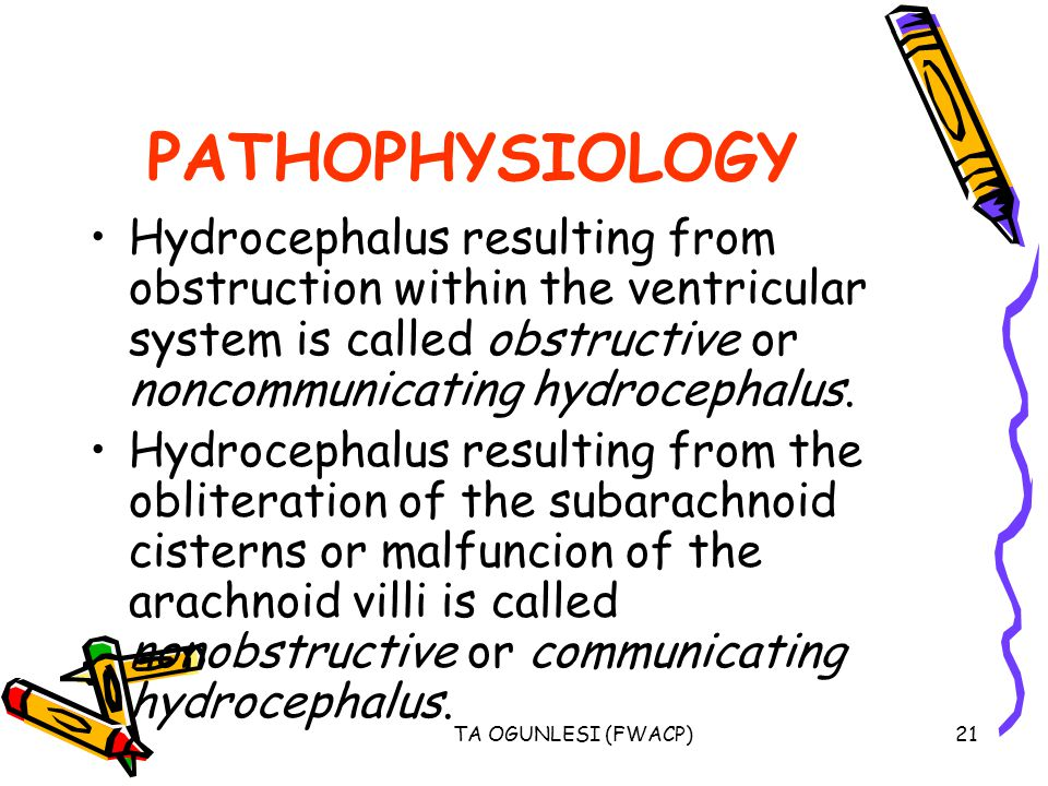 PATHOPHYSIOLOGY Hydrocephalus resulting from obstruction within the ventricular system is called obstructive or noncommunicating hydrocephalus.