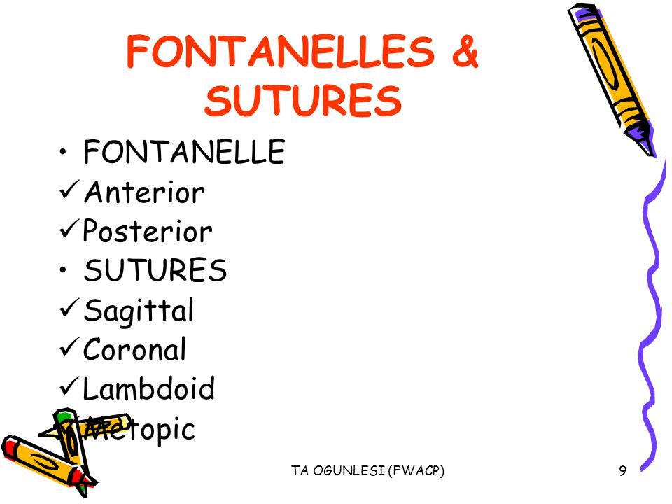 FONTANELLES & SUTURES FONTANELLE Anterior Posterior SUTURES Sagittal