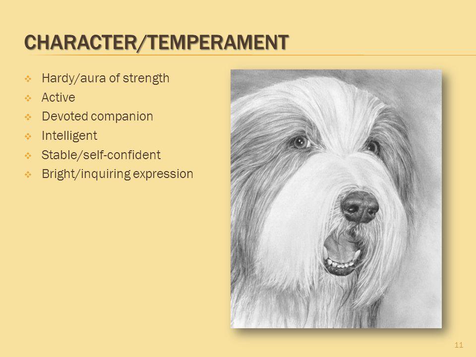 Character/Temperament