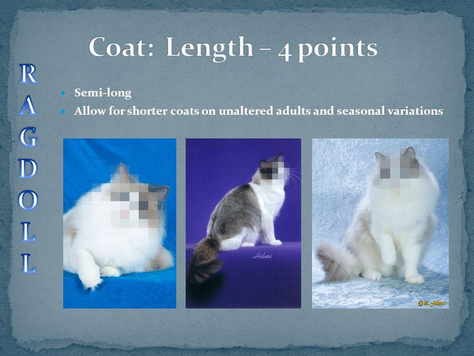Coat: Length – 4 points R A G D O L Semi-long