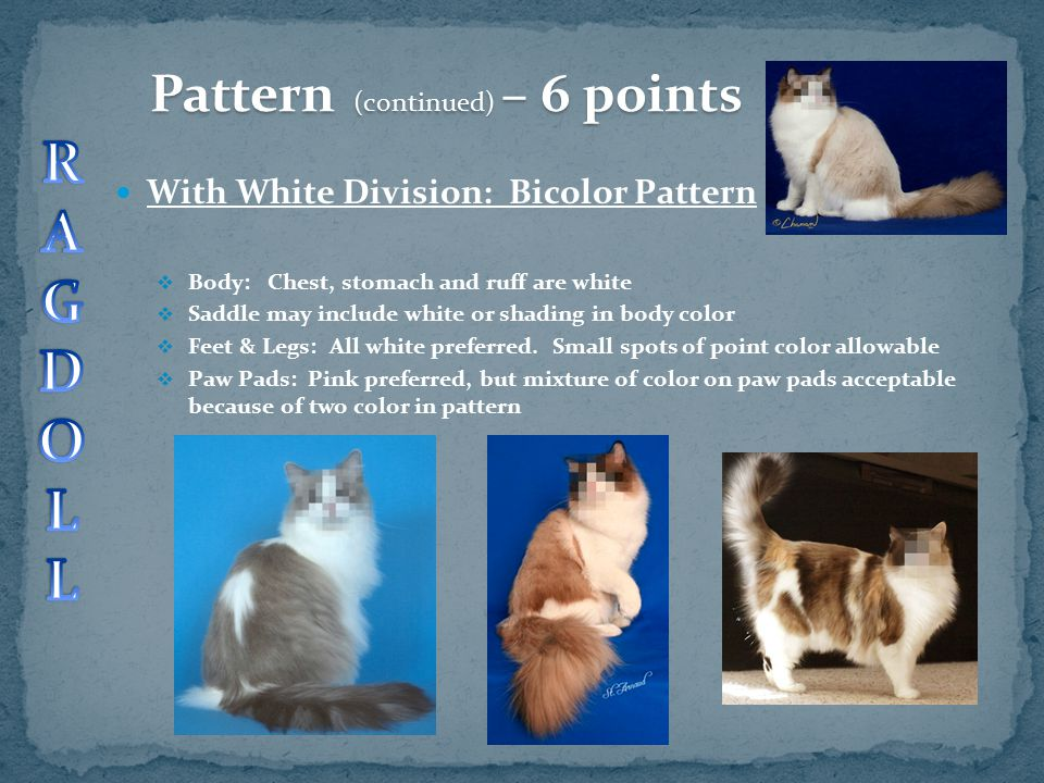 R A G D O L Pattern (continued) – 6 points