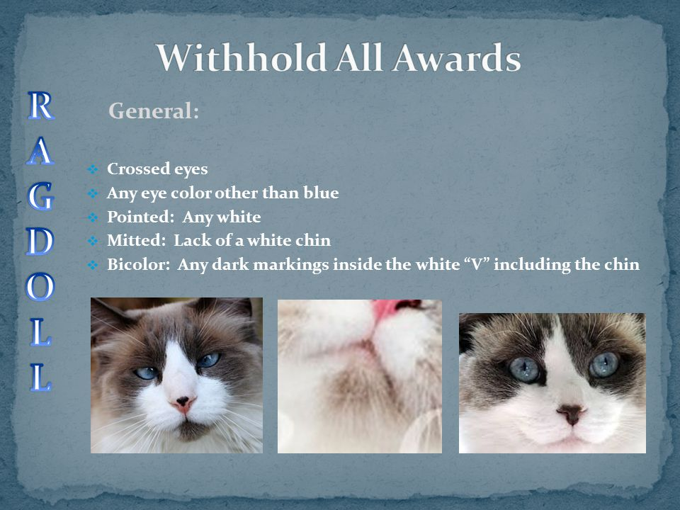 Withhold All Awards R A G D O L General: Crossed eyes